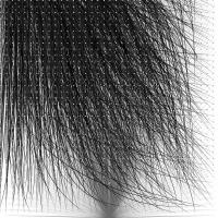 36_wig.jpg